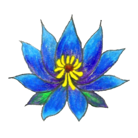 Blue Lotus Ethnobotanicals